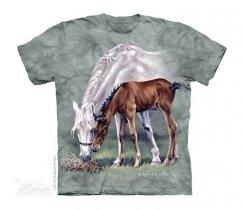 Horses in Springtime - The Mountain Junior