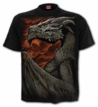 Majestic Draco - Spiral