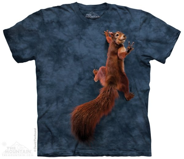Peace Squirrel - Veverka - The Mountain