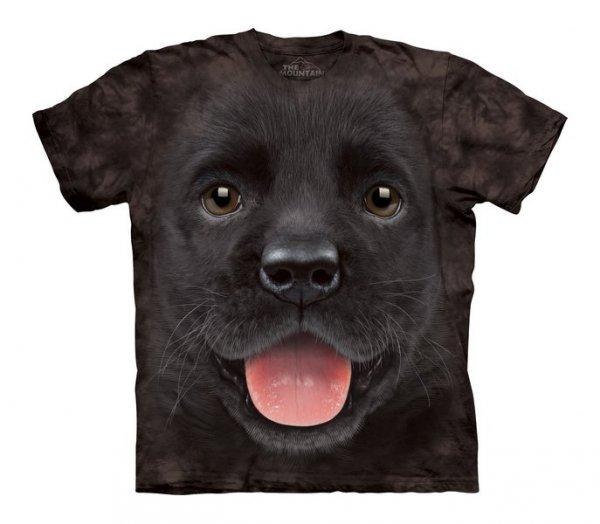 Big Face Black Lab Puppy- The Mountain - Junior