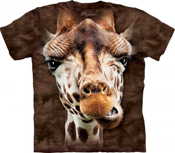 Giraffe - The Mountain