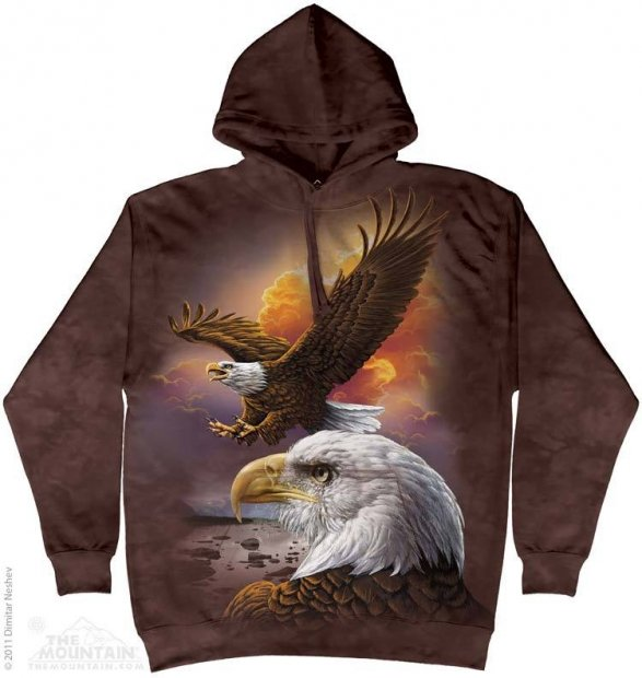 Eagle & Clouds - Bluza The Mountain