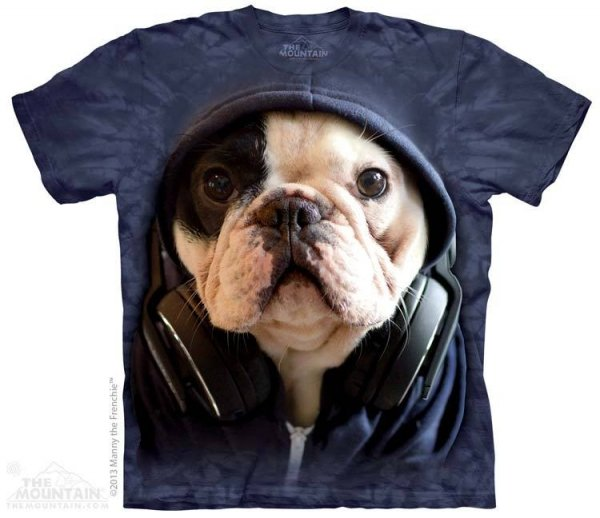 DJ Manny the Frenchie - Buldog Francuski - The Mountain