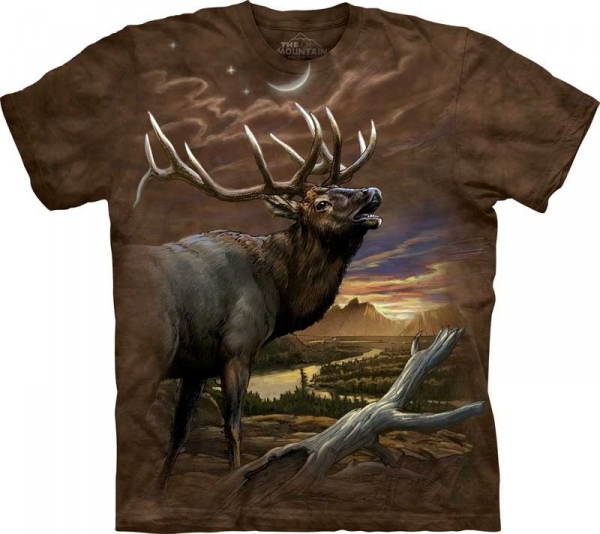 The Mountain -  Elk at Dust
