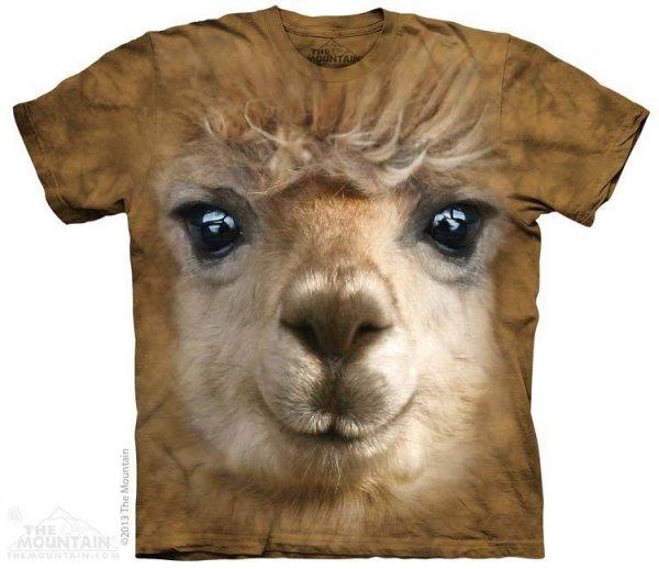 Big Face Alpaca - The Mountain