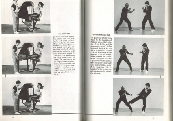 High Intensity Weight Training for the Martial Artist