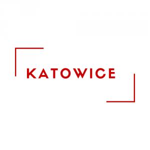 Kurs Kierownika Wypoczynku - Katowice 10.04.2021