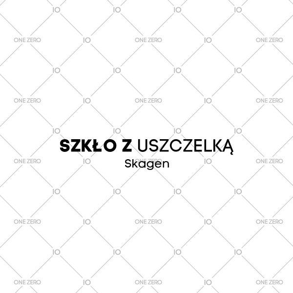 szkło z uszczelką Skagen • ONE ZERO • Modne zegarki i biżuteria • Autoryzowany sklep