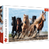 Puzzle Galopujące Konie 1000 el. Trefl 10446