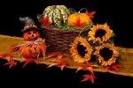Zaduszki a może Halloween?