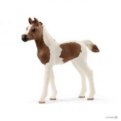 Żrebię rasy Pintabian Figurka Konia Schleich 13839
