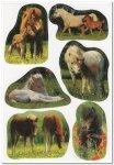 Naklejki ze zdjęciami kucyków i źrebiąt - Herma