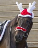 Nauszniki świąteczne RENIFER - QHP - Pony