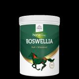 HorseLine Boswellia Seratta 500g - Pokusa