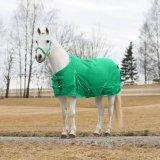Derka padokowa 200g 600D Winter PONY - Horze - jellybean green