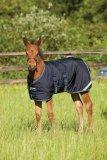 Derka padokowa dla źrebaka 200g 600D AMIGO Foal Turnout - Horseware - Navy/Navy & Silver