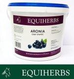 Aronia owoc 1 kg - EQUIHERBS