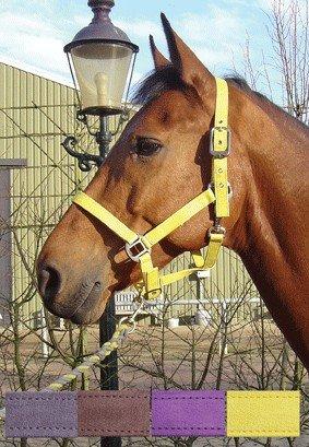 Kantar LUXE - Harry's Horse