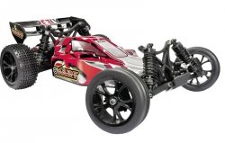 REELY DART BUGGY RC 1:10, 2WD, 2,4 GHz, RtR