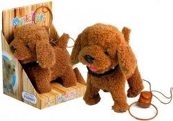 Interaktywny Piesek Pies Na Smyczy Brązowy Pudel