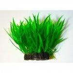 Aquael Roślina Kępkowa PR-410 4 (10cm)