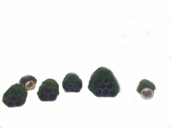 Gałęzatka Na Rurkobloczku Mikro 3-Rurki 40x30x30mm Naturalna Ozdoba