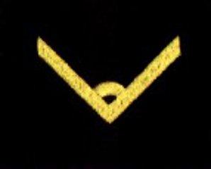 oznaka stopnia do kurtki lub swetra MW młodszy chorąży