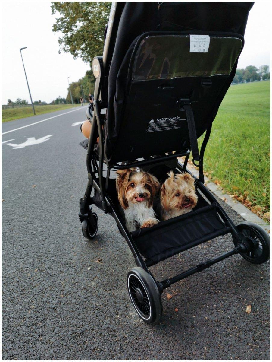 Wózek dziecięcy Spacerówka Moby-System LENA