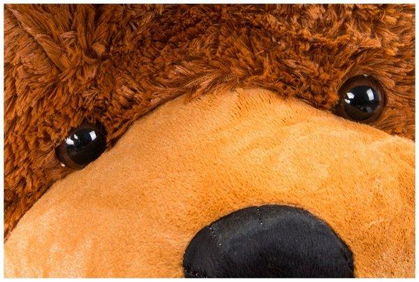 Miś pluszowy GIGANT 200 cm - ciemny brąz