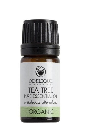Odylique by Essential Care organiczny olejek eteryczny Drzewo Herbaciane, 10 ml