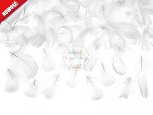 Piórka dekoracyjne białe 3g