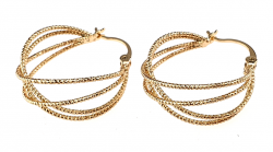 gold plated earrings with exclusive 18K