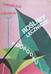 Fiodor Mamczur, Jarosław Gładun • Rośliny lecznicze w ogródku