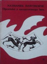 Nathaniel Hawthorne • Opowieści z zaczarowanego lasu [Jerzy Srokowski]