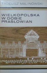 Tadeusz Malinowski • Wielkopolska w dobie Prasłowian