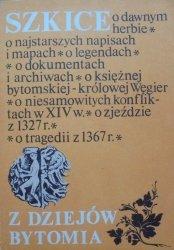 Szkice z dziejów Bytomia [Bytom]