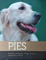 Artur Dobrzyński • Pies. Wszystko o pielęgnacji, zdrowiu, żywieniu, wychowaniu i tresurze