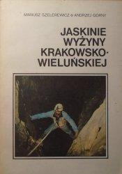 Mariusz Szelerewicz, Andrzej Górny • Jaskinie Wyżyny Krakowsko-Wieluńskiej
