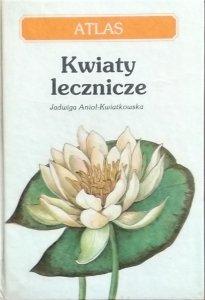 Jadwiga Anioł-Kwiatkowska • Kwiaty lecznicze