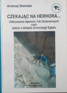 Andrzej Niwiński • Czekając na Herhora. Odkrywanie tajemnic Teb Stubramnych czyli szkice z dziejów archeologii Egiptu