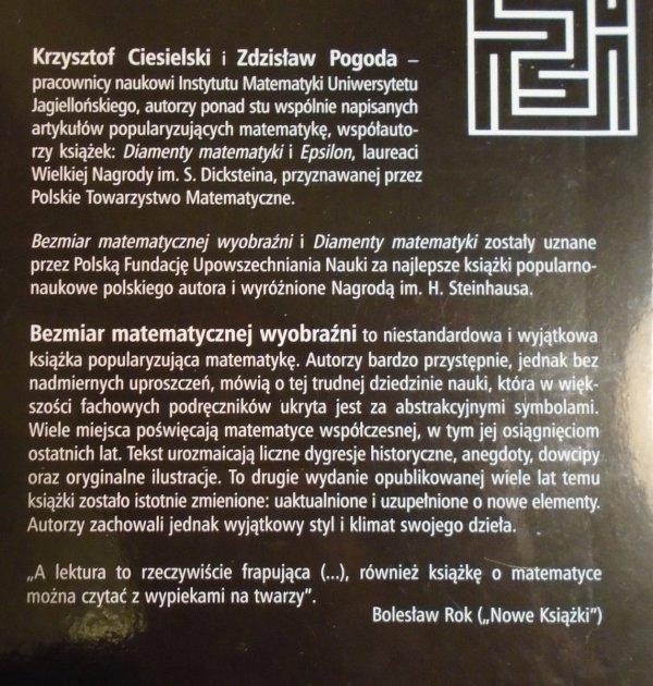 Krzysztof Ciesielski, Zdzisław Pogoda • Bezmiar matematycznej wyobraźni