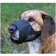 Kaganiec Trixie z nylonu dla psa z siatką