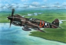 Special Hobby 72338 P-40E Warhawk 'Claws and Teeth' 1/72
