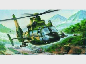 Trumpeter 02802 Harbin Z-9G Armed Helicopter 1/48