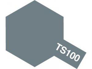 Tamiya 85100 TS-100 SG Bright Gun Metal Spray