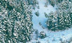 Vallejo 26231 Piana i śnieg 32ml