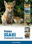 Polska Ssaki Encyklopedia ilustrowana