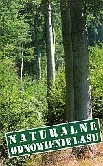 Naturalne odnowienie lasu