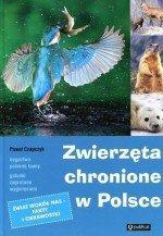 Zwierzęta chronione w Polsce