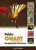 Polska Owady i inne bezkręgowce Encyklopedia ilustrowana